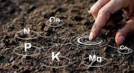 Analiza gleby - siarka (S)