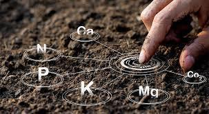 Bor (B) - analiza gleby (1)